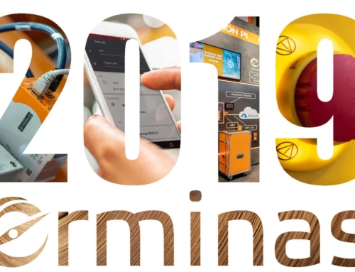 erminas review 2019